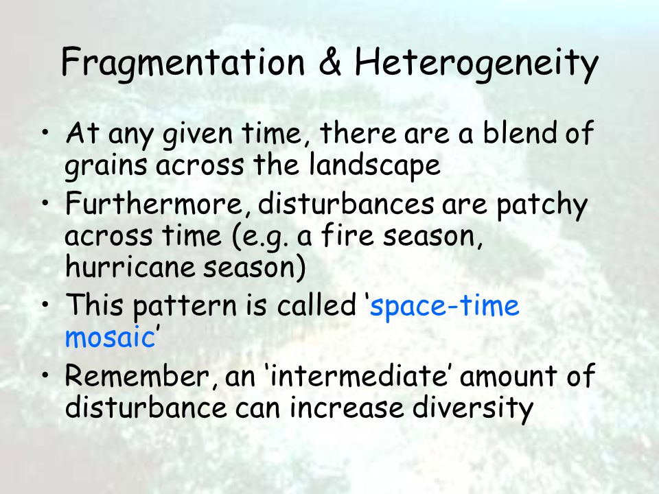 Fragmentation & Heterogeneity At any given time, there are a blend of grains across the landscape Furthermore, disturbances are patchy across time (e.g.
