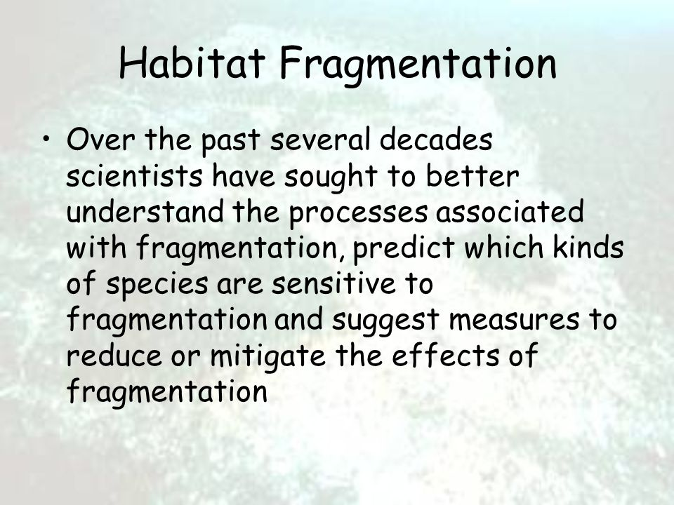 Habitat Fragmentation Over the past several decades scientists have sought to better understand the processes associated with fragmentation, predict which kinds of species are sensitive to fragmentation and suggest measures to reduce or mitigate the effects of fragmentation