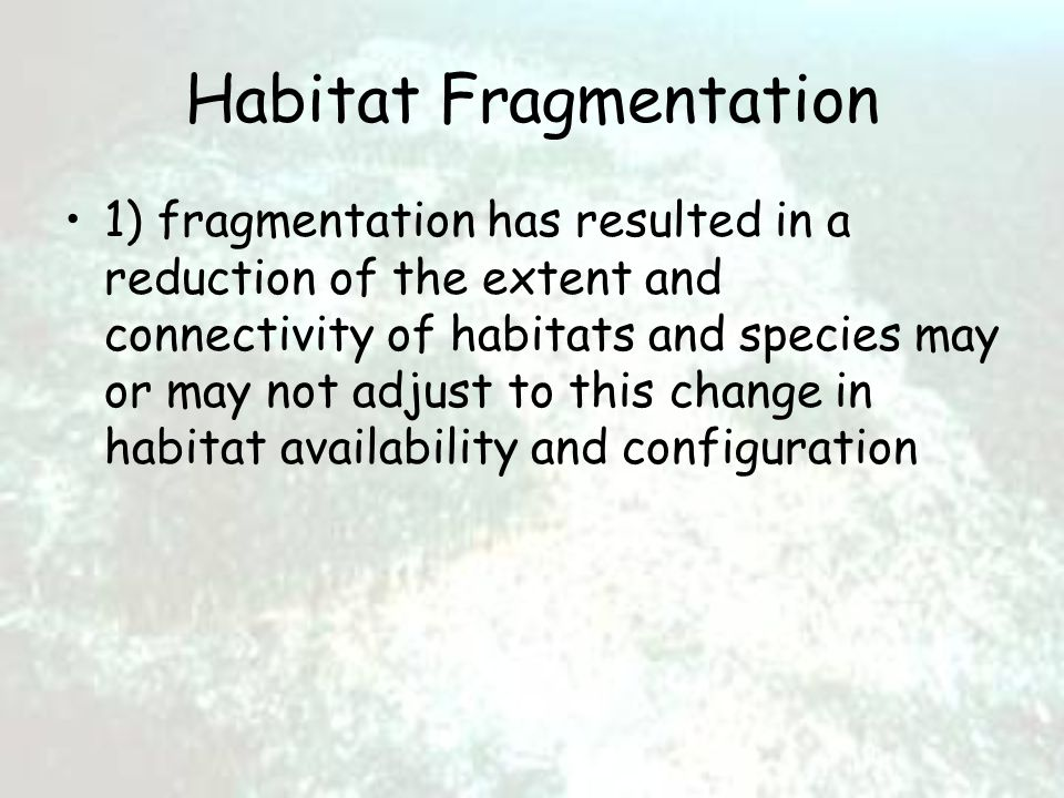 Habitat Fragmentation 1) fragmentation has resulted in a reduction of the extent and connectivity of habitats and species may or may not adjust to this change in habitat availability and configuration