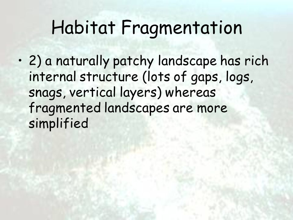 Habitat Fragmentation 2) a naturally patchy landscape has rich internal structure (lots of gaps, logs, snags, vertical layers) whereas fragmented landscapes are more simplified