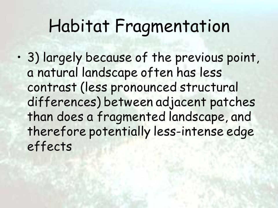 Habitat Fragmentation 3) largely because of the previous point, a natural landscape often has less contrast (less pronounced structural differences) between adjacent patches than does a fragmented landscape, and therefore potentially less-intense edge effects