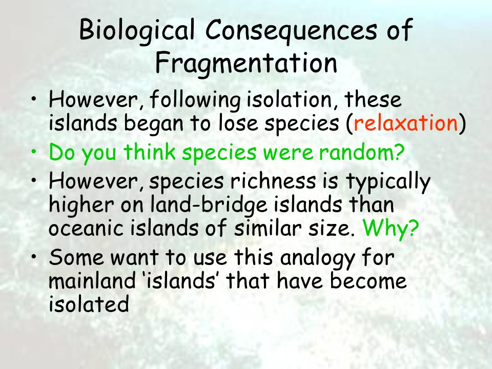 Biological Consequences of Fragmentation However, following isolation, these islands began to lose species (relaxation) Do you think species were random.
