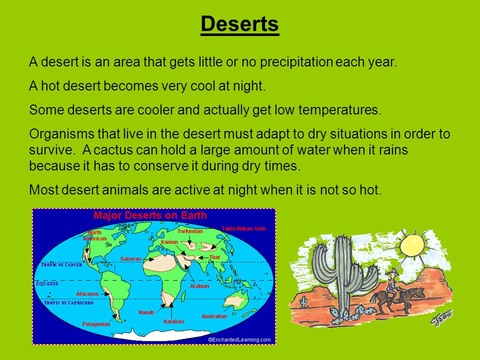 Deserts A desert is an area that gets little or no precipitation each year.