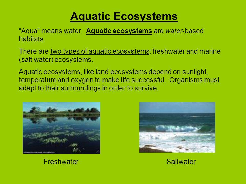 Aquatic Ecosystems Aqua means water.Aquatic ecosystems are water-based habitats.