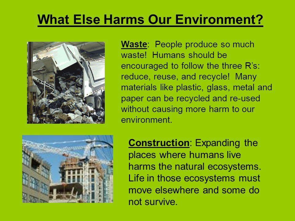 What Else Harms Our Environment.