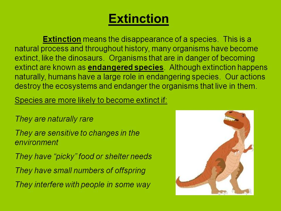 Extinction Extinction means the disappearance of a species.
