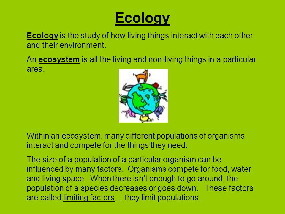 Ecology Ecology is the study of how living things interact with each other and their environment.