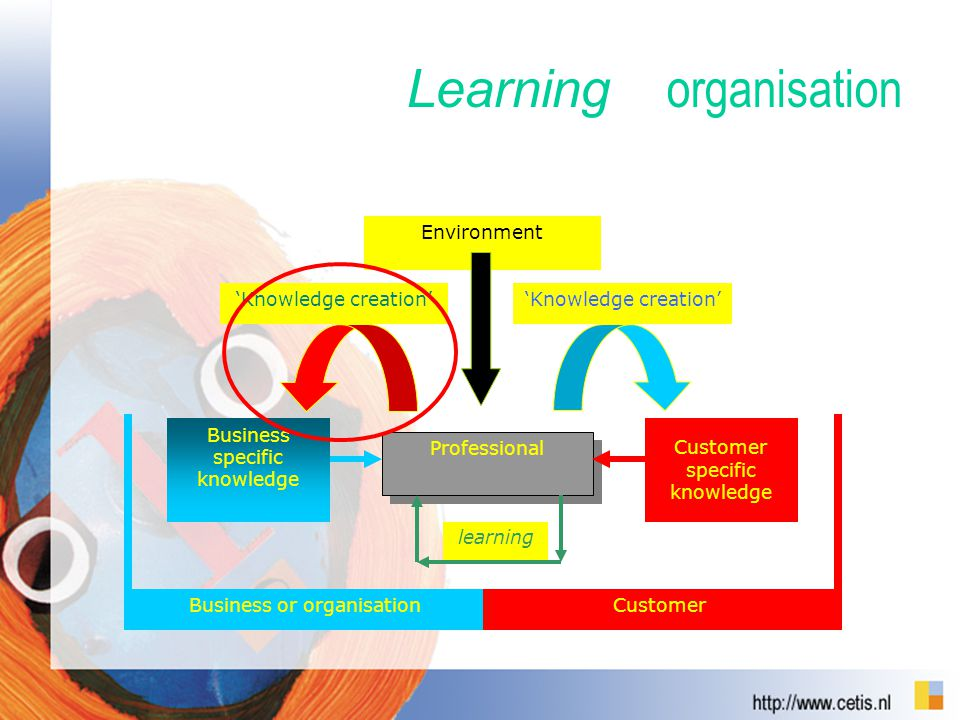 organisation Business or organisationCustomer Professional learning Business specific knowledge 'Knowledge creation' Customer specific knowledge 'Knowledge creation' Environment Learning
