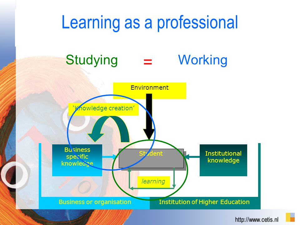 Learning as a professional Student learning Business specific knowledge 'Knowledge creation' Institutional knowledge Environment Business or organisationInstitution of Higher Education Studying = Working