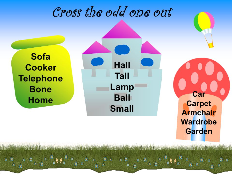 Sofa Cooker Telephone Bone Home Hall Tall Lamp Ball Small Car Carpet Armchair Wardrobe Garden Cross the odd one out