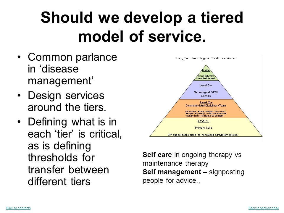 Should we develop a tiered model of service.