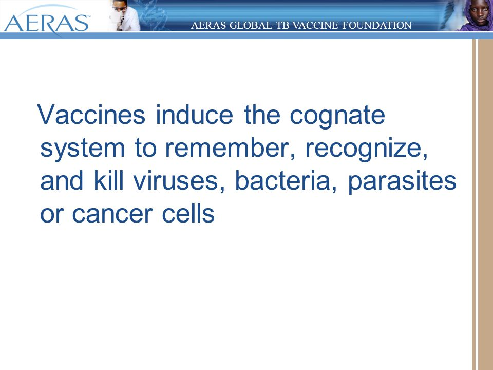 AERAS GLOBAL TB VACCINE FOUNDATION Vaccines induce the cognate system to remember, recognize, and kill viruses, bacteria, parasites or cancer cells