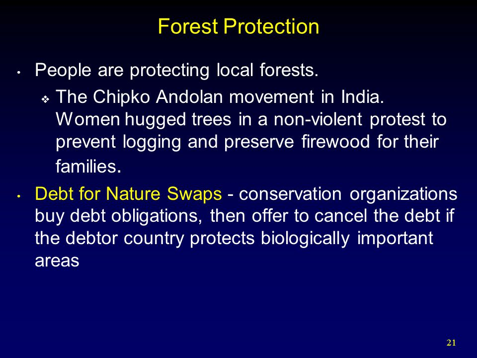 21 Forest Protection People are protecting local forests.