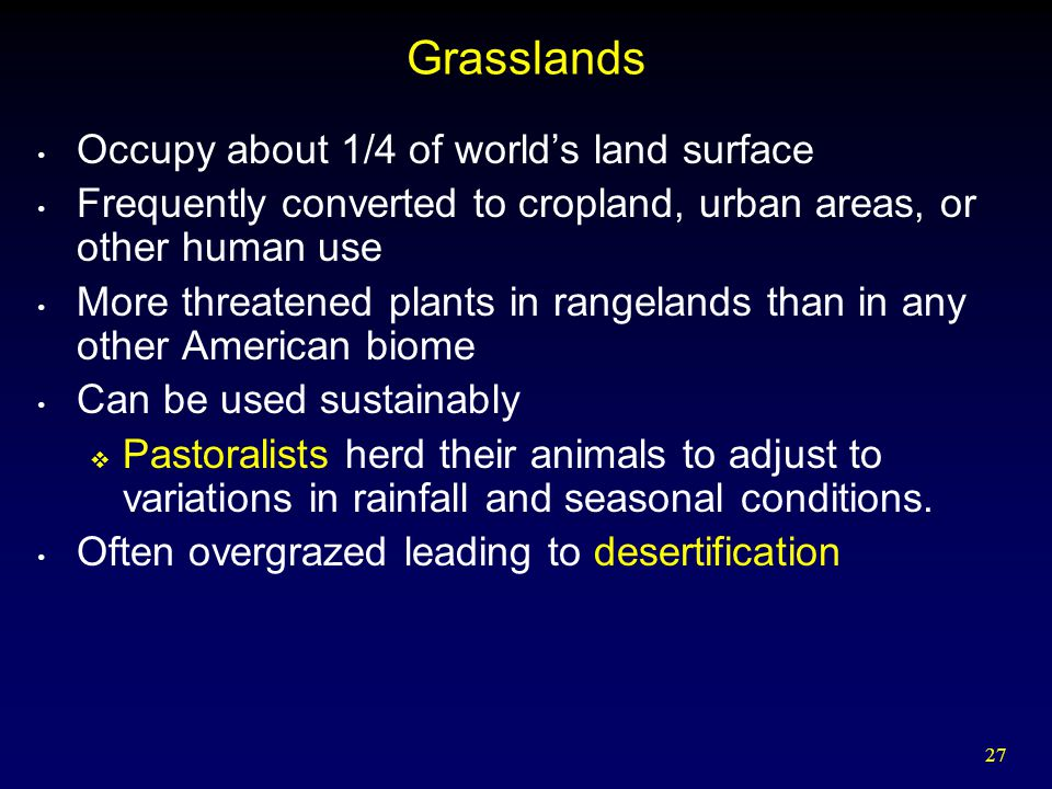27 Grasslands Occupy about 1/4 of world's land surface Frequently converted to cropland, urban areas, or other human use More threatened plants in rangelands than in any other American biome Can be used sustainably  Pastoralists herd their animals to adjust to variations in rainfall and seasonal conditions.