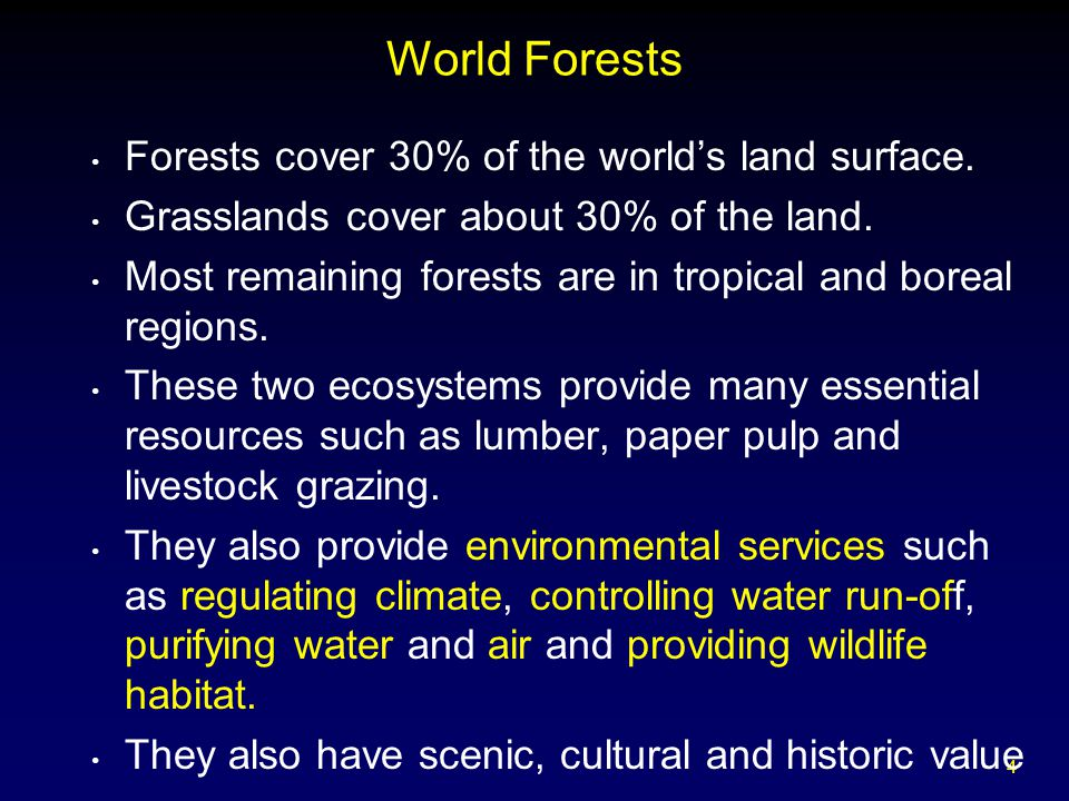 4 World Forests Forests cover 30% of the world's land surface.