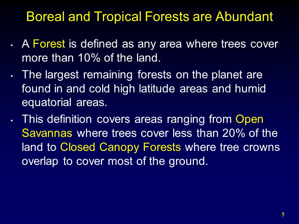 16 World Forests Problem with farming in a converted tropical rainforest is the rain.