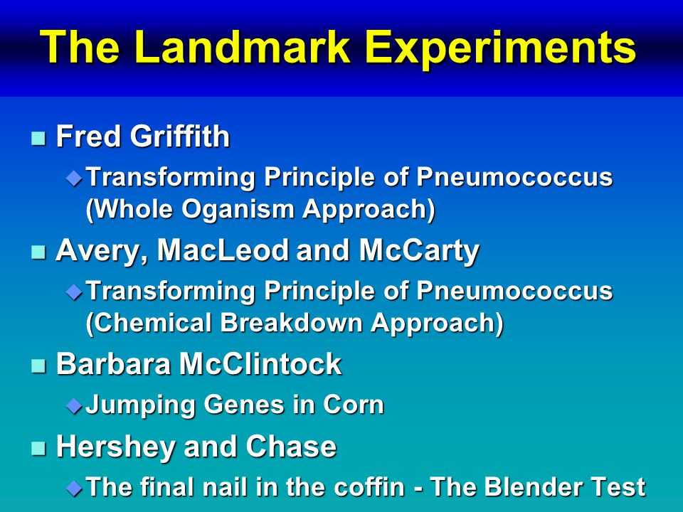 The Landmark Experiments n Fred Griffith u Transforming Principle of Pneumococcus (Whole Oganism Approach) n Avery, MacLeod and McCarty u Transforming Principle of Pneumococcus (Chemical Breakdown Approach) n Barbara McClintock u Jumping Genes in Corn n Hershey and Chase u The final nail in the coffin - The Blender Test