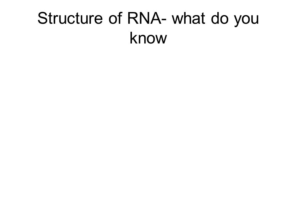 Structure of RNA- what do you know