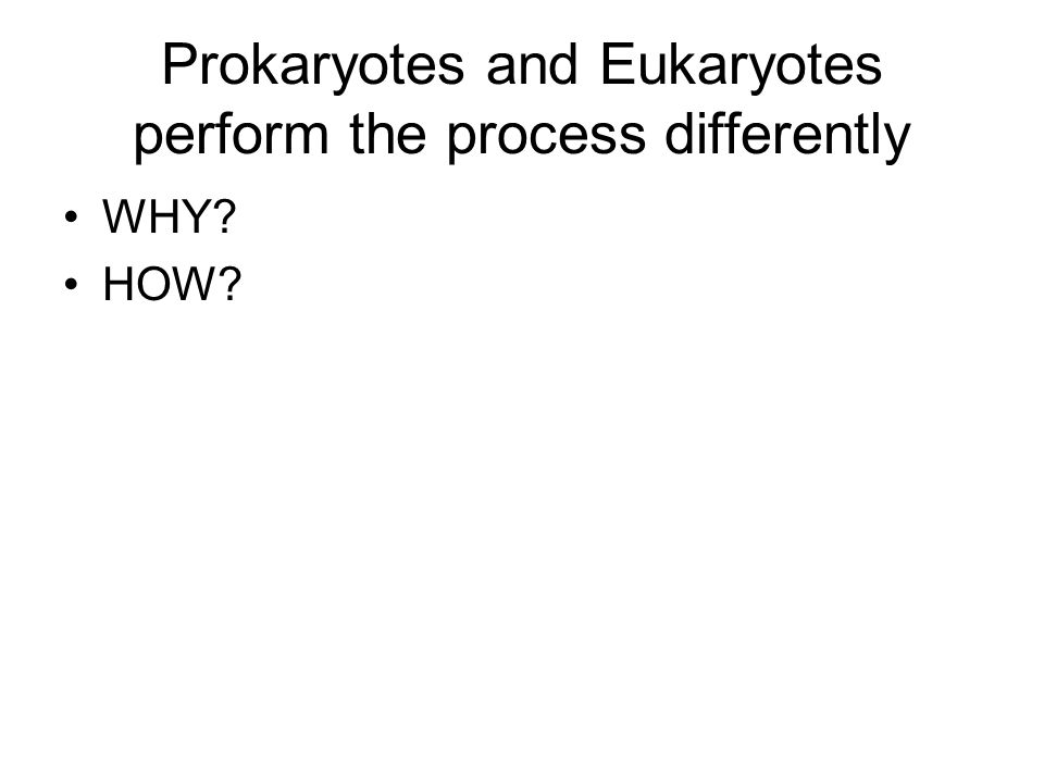 Prokaryotes and Eukaryotes perform the process differently WHY? HOW?