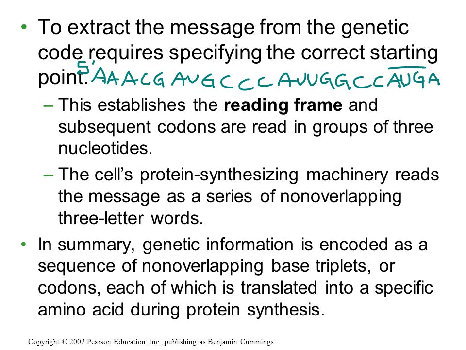 To extract the message from the genetic code requires specifying the correct starting point. –This establishes the reading frame and subsequent codons
