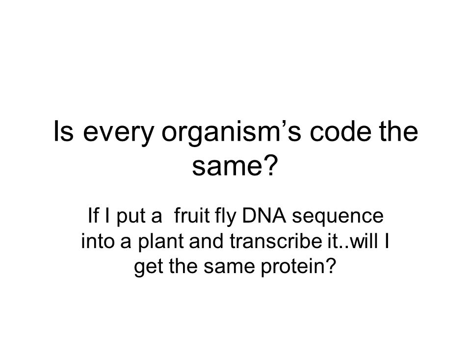 Is every organism's code the same? If I put a fruit fly DNA sequence into a plant and transcribe it..will I get the same protein?