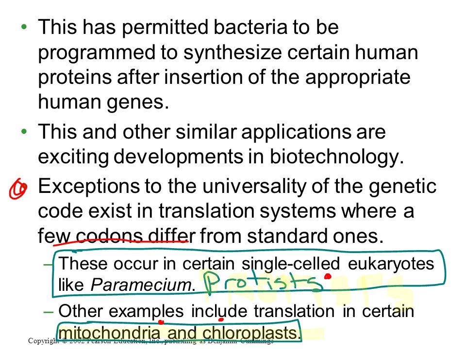 This has permitted bacteria to be programmed to synthesize certain human proteins after insertion of the appropriate human genes. This and other simil