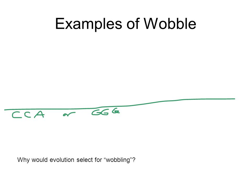 "Examples of Wobble Why would evolution select for ""wobbling""?"