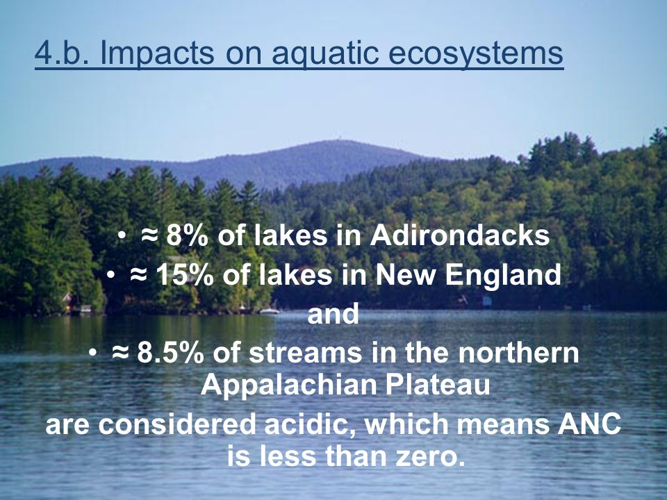 Acid Rain 101 ≈ 8% of lakes in Adirondacks ≈ 15% of lakes in New England and ≈ 8.5% of streams in the northern Appalachian Plateau are considered acid