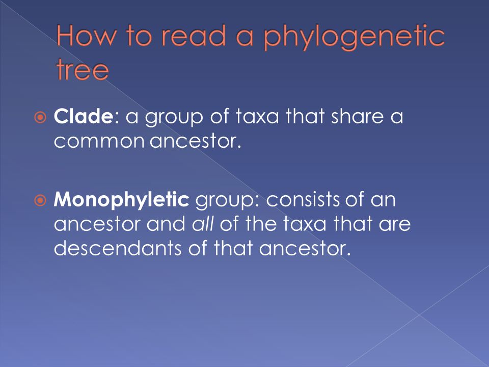  Clade : a group of taxa that share a common ancestor.  Monophyletic group: consists of an ancestor and all of the taxa that are descendants of that