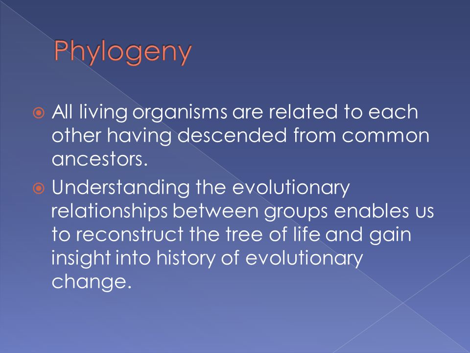  All living organisms are related to each other having descended from common ancestors.