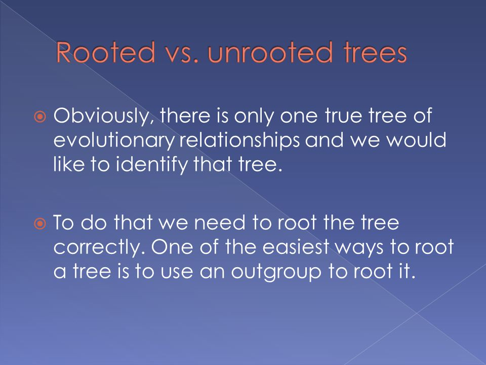  Obviously, there is only one true tree of evolutionary relationships and we would like to identify that tree.