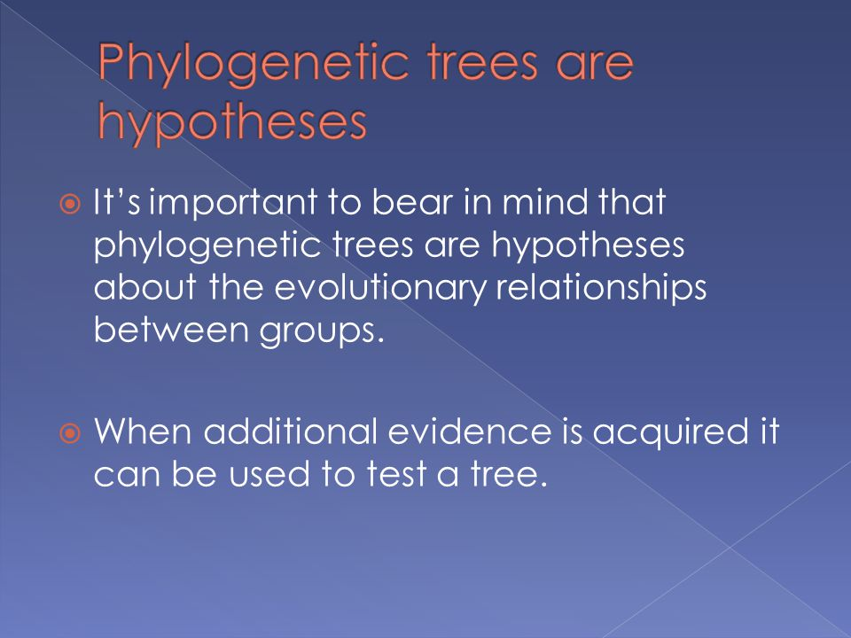  It's important to bear in mind that phylogenetic trees are hypotheses about the evolutionary relationships between groups.