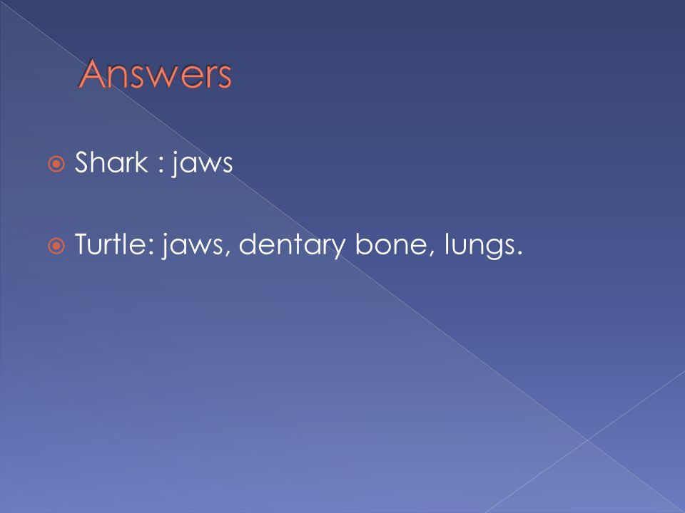  Shark : jaws  Turtle: jaws, dentary bone, lungs.