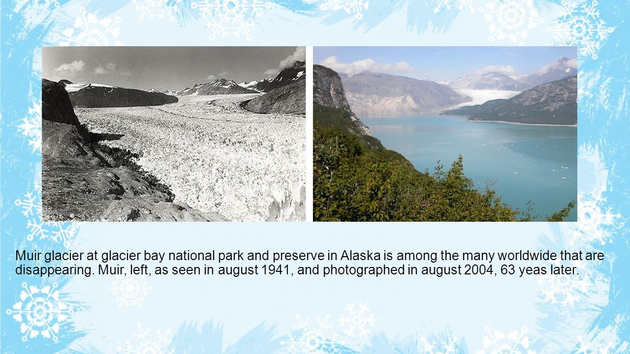 Muir glacier at glacier bay national park and preserve in Alaska is among the many worldwide that are disappearing. Muir, left, as seen in august 1941