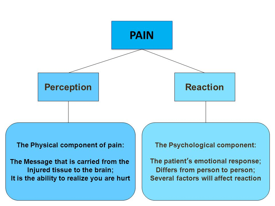 PerceptionReaction PAIN The Psychological component: The patient's emotional response; Differs from person to person; Several factors will affect reaction The Physical component of pain: The Message that is carried from the Injured tissue to the brain; It is the ability to realize you are hurt