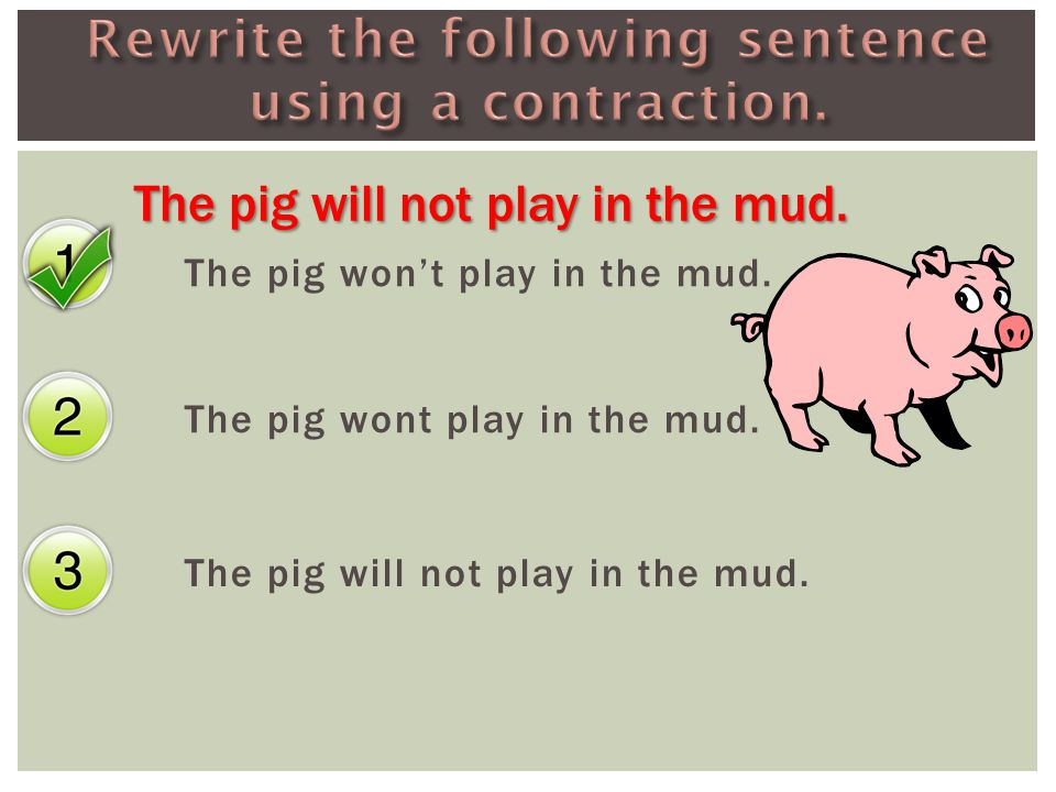 The pig won't play in the mud. The pig wont play in the mud. The pig will not play in the mud.