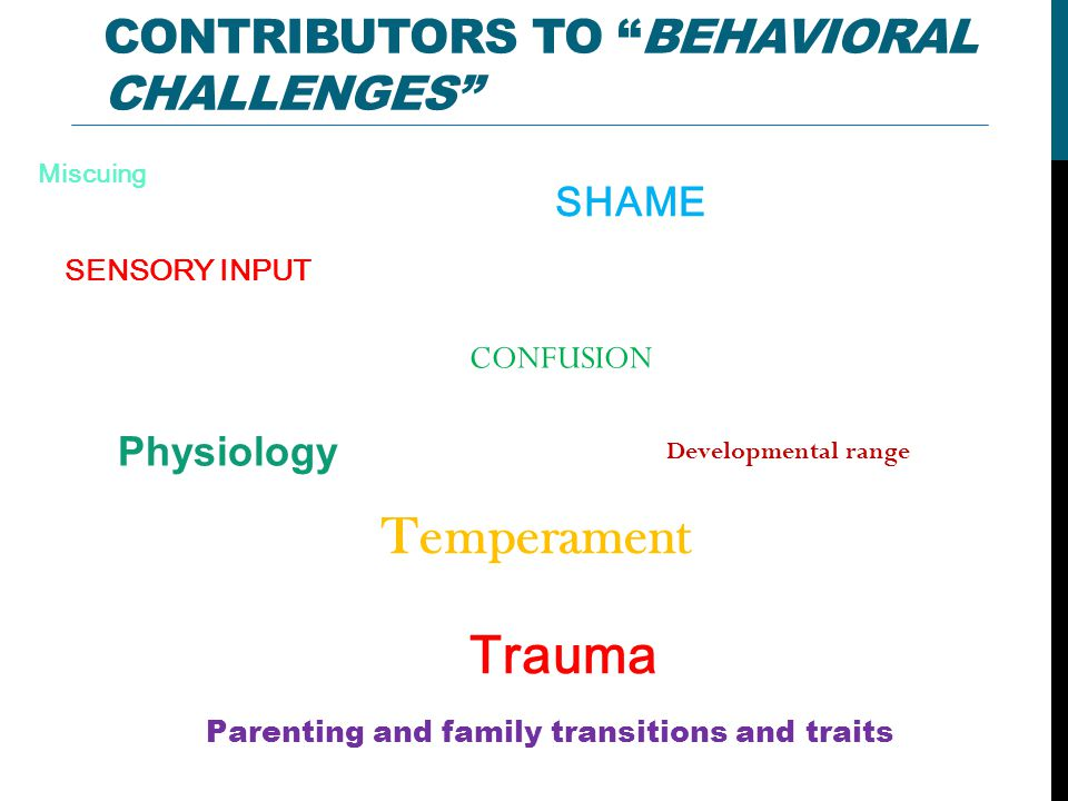 CONTRIBUTORS TO BEHAVIORAL CHALLENGES Parenting and family transitions and traits SENSORY INPUT Miscuing CONFUSION Physiology Temperament Developmental range SHAME Trauma