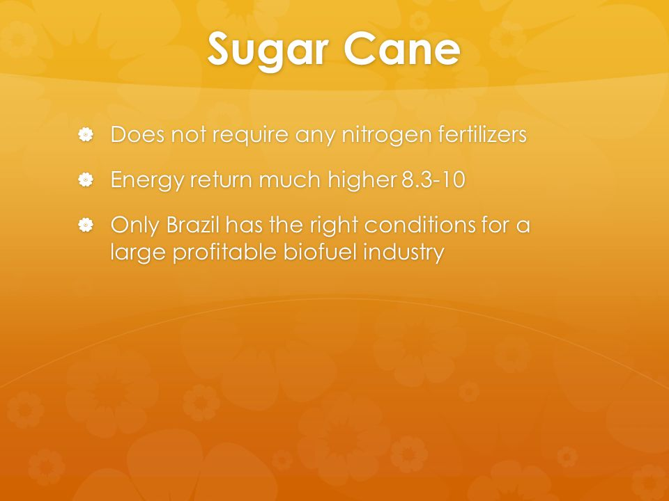 Sugar Cane  Does not require any nitrogen fertilizers  Energy return much higher 8.3-10  Only Brazil has the right conditions for a large profitable biofuel industry