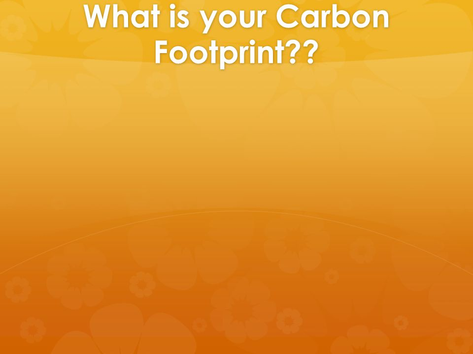 What is your Carbon Footprint??