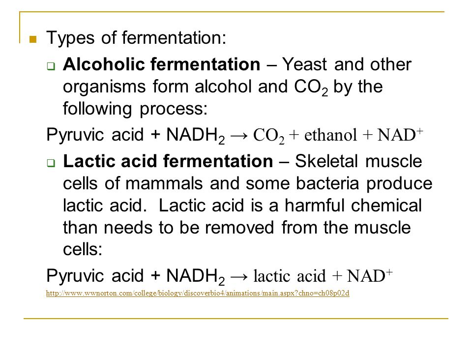 Types of fermentation:  Alcoholic fermentation – Yeast and other organisms form alcohol and CO 2 by the following process: Pyruvic acid + NADH 2 → CO