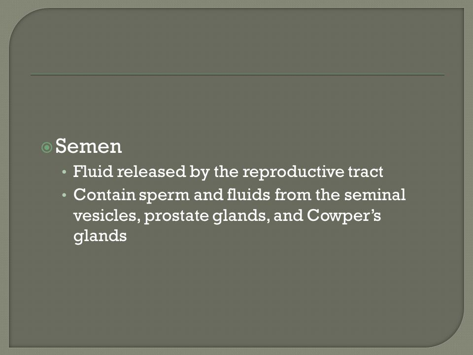  Semen Fluid released by the reproductive tract Contain sperm and fluids from the seminal vesicles, prostate glands, and Cowper's glands