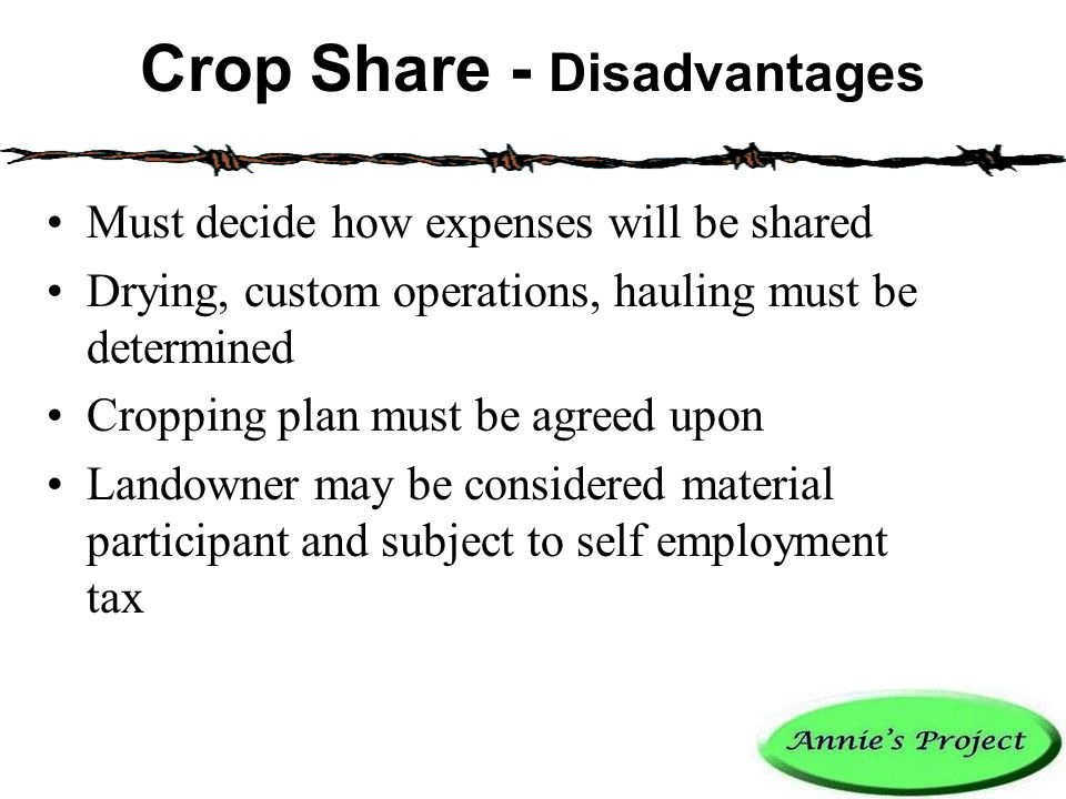 Crop Share - Disadvantages Must decide how expenses will be shared Drying, custom operations, hauling must be determined Cropping plan must be agreed upon Landowner may be considered material participant and subject to self employment tax