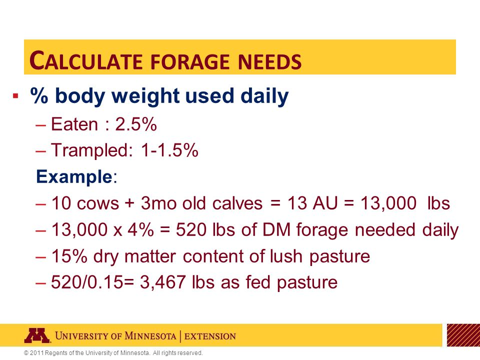 © 2011 Regents of the University of Minnesota. All rights reserved. C ALCULATE FORAGE NEEDS ▪% body weight used daily –Eaten : 2.5% –Trampled: 1-1.5%