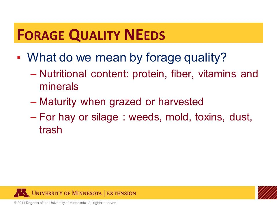 © 2011 Regents of the University of Minnesota. All rights reserved. F ORAGE Q UALITY NE EDS ▪What do we mean by forage quality? –Nutritional content: