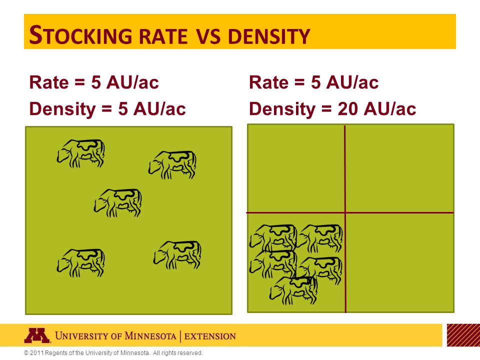 © 2011 Regents of the University of Minnesota. All rights reserved. Rate = 5 AU/ac Density = 5 AU/ac Rate = 5 AU/ac Density = 20 AU/ac S TOCKING RATE