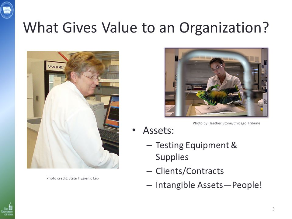 What Gives Value to an Organization.
