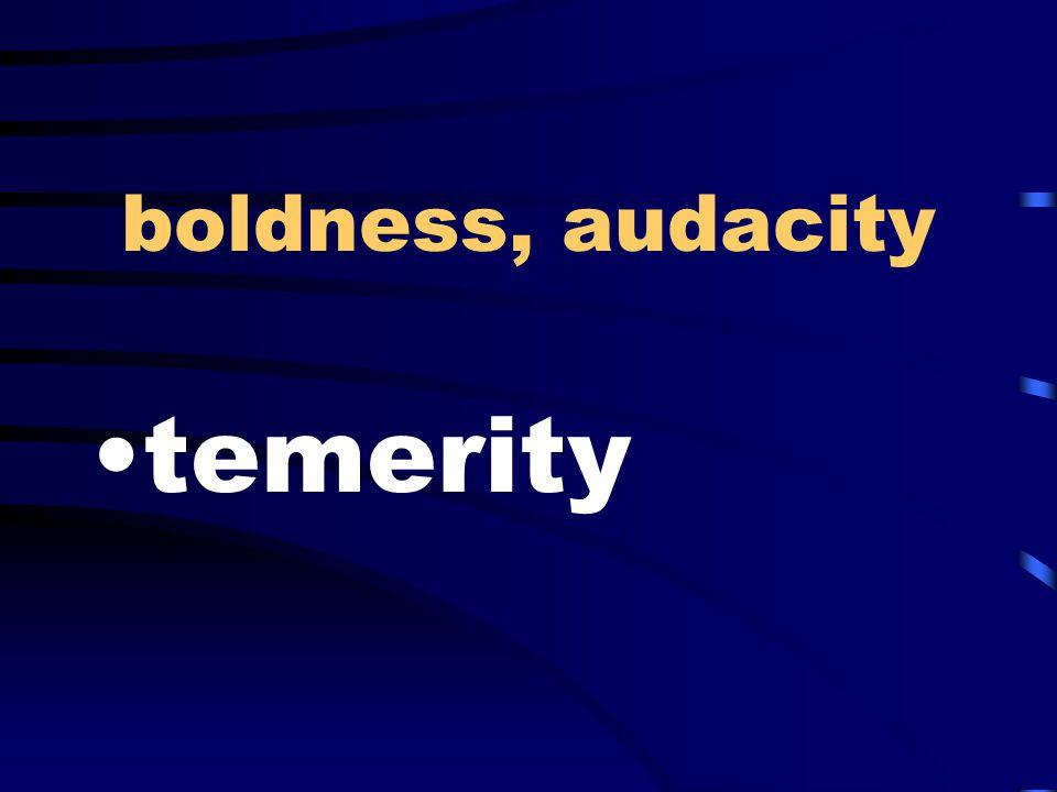 boldness, audacity temerity