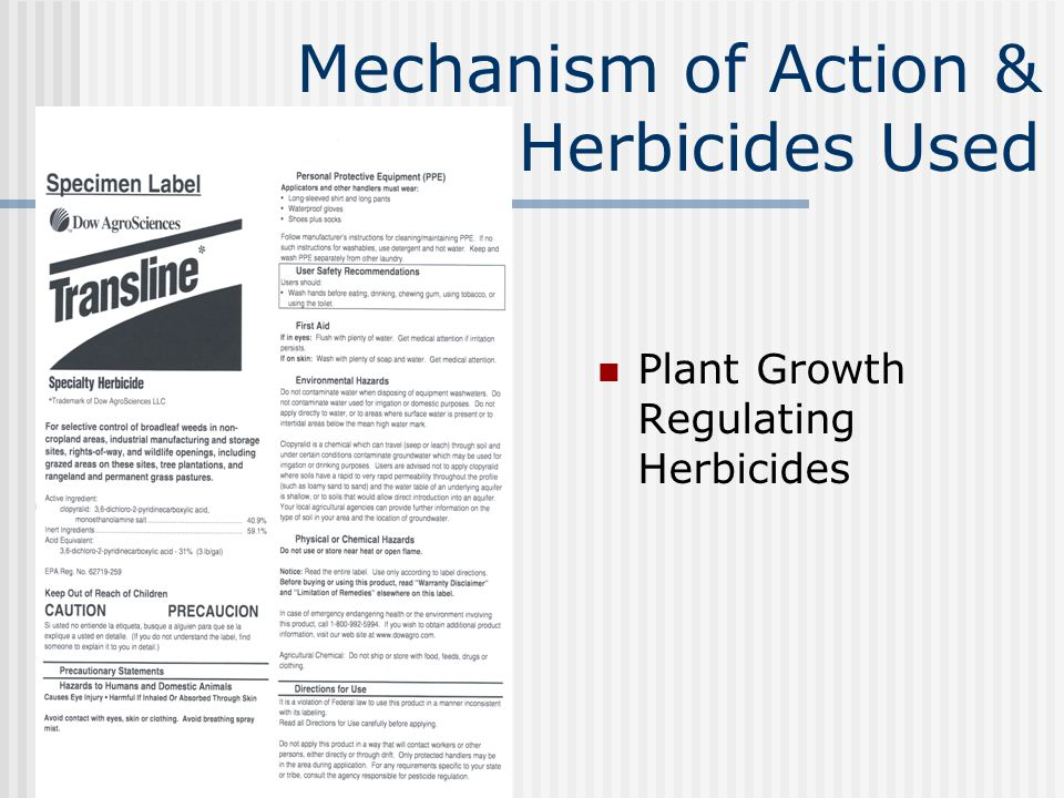 Mechanism of Action & Herbicides Used Plant Growth Regulating Herbicides
