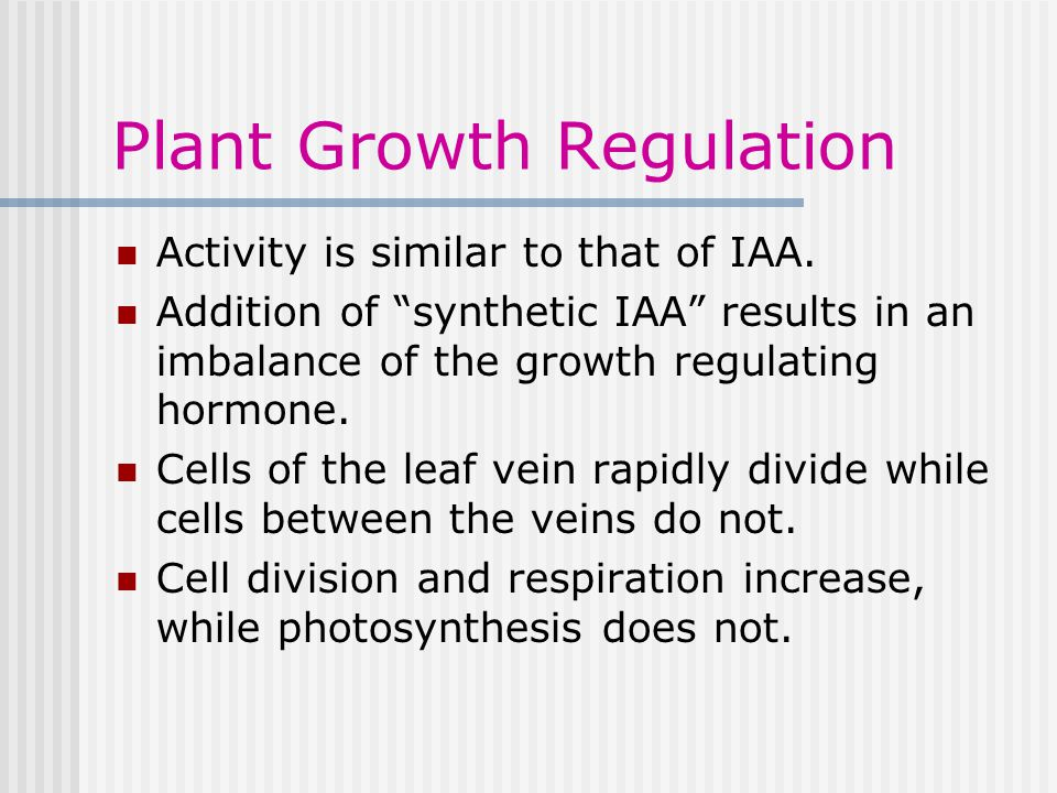 Plant Growth Regulation Activity is similar to that of IAA.