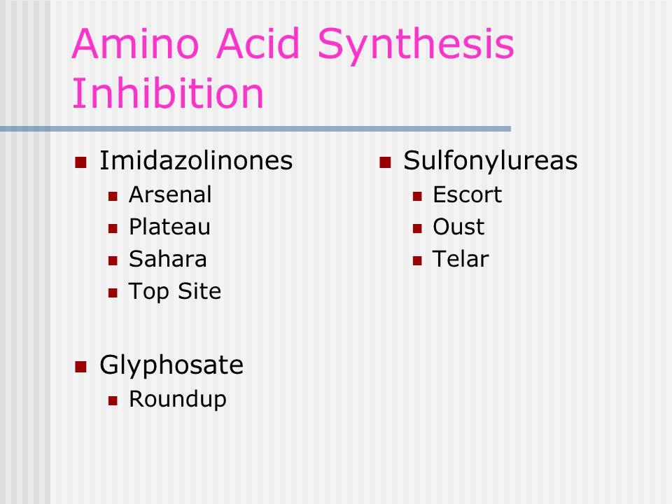 Amino Acid Synthesis Inhibition Imidazolinones Arsenal Plateau Sahara Top Site Glyphosate Roundup Sulfonylureas Escort Oust Telar